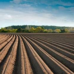 la nouvelle agriculture d'avenir